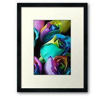 Rainbow Roses 10 Framed Print