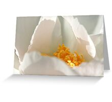 White Sack of Gold Greeting Card