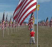 American Flags by Luann wilslef