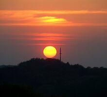 Receiving Sun by TriciaDanby