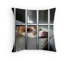 Her Majesty Is Being Detained! Throw Pillow