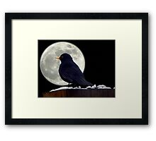 I need to find somewhere to roost. Framed Print