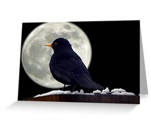 I need to find somewhere to roost. Greeting Card