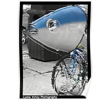 Fish on a Bicycle Poster
