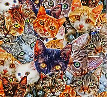Cat Collage by Tr0y