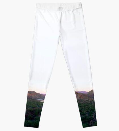 Arizona Leggings