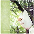 Newborn Tree Hammock by Kristen  Byrne