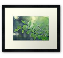 Summer Time Framed Print