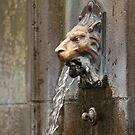 Lion of Buxton 3 by JohnBuchanan
