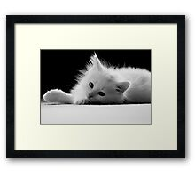 Meet Mickey - Shelter Art Framed Print