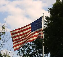 Happy 4th of July in the USA! by Abbey Walls
