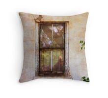 Window, Stucco, Black Trim Throw Pillow