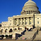 Nation's Capitol by Lana Kole