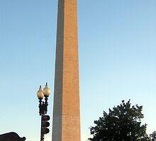 Washington Monument by Lana Kole