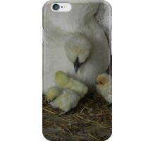 Baby Chicks! OMG! iPhone Case/Skin