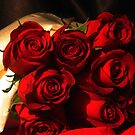 Eight Red Roses (2) by dreamNwish