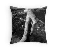 Driftwood on Lake Superior Throw Pillow