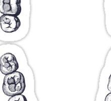 Teeth Sticker