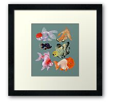 Fishies Framed Print