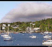 Northeast Harbor by Lyana Votey