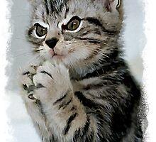 Evil Genius - The Cat by verypeculiar