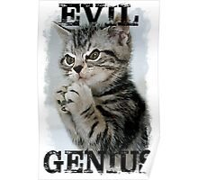 Evil Genius - The Cat Poster