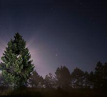 landscape before midnight 6 by Andraž Jenkole