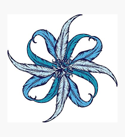 Blue Feather Flower Photographic Print