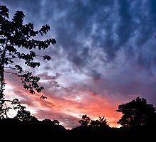 Sunrise at Matamau Lodge, Mulu, Sarawak, Borneo by Trishy