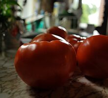 Fresh Tomato  by Jeff Stroud