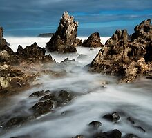 Petrel Cove by Andrew Dickman