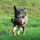 playin football by wayatsagi