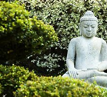 Buddha in the white garden by WebVivant