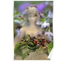 Ladybug Dreams  Poster