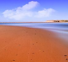 Saltwater Australia 01 by kevin chippindall