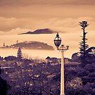 under the volcano[s] by dennis william gaylor