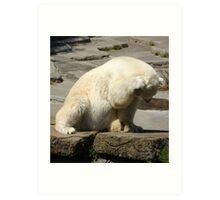 Oh No! Bear Art Print