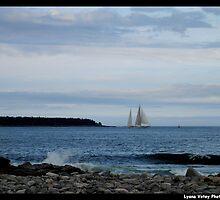 Sail Away by Lyana Votey