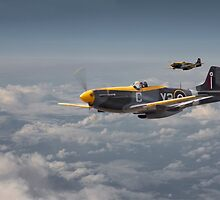 Mustang P51 - 442Sqdn RCAF by Pat Speirs