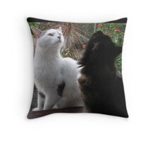 Point of Interest Throw Pillow