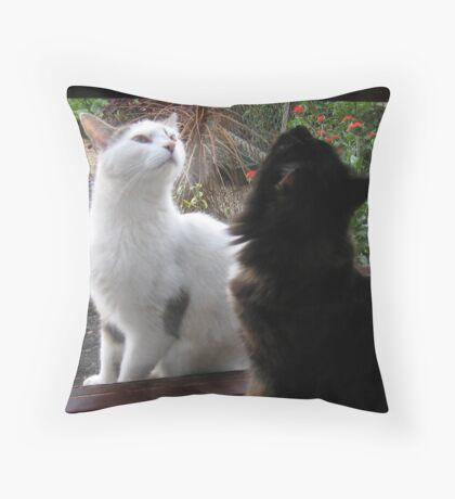 Point of Interest Throw Pillow