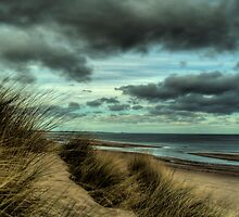 Sand Dunes - Early Evening by Michael Brewis
