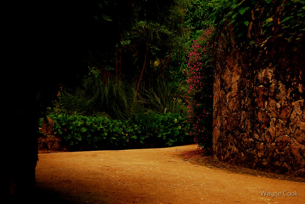 Road to Freedom-Quinta da Regaleira by Wayne Cook