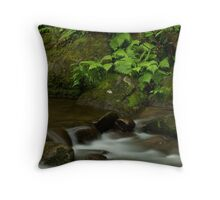 Anthony Creek Throw Pillow