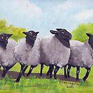 Oregon Sheep oil painting by Barbara Anne Applegate by Barbara Applegate