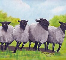 Oregon Sheep oil painting by Barbara Anne Applegate by Barbara Applegate