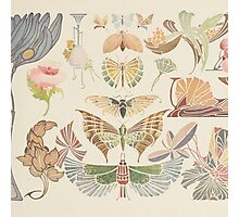 Vintage pink brown floral butterfly pattern Photographic Print