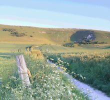 Path to Long Man, Wilmington, East Sussex by Craig Williams