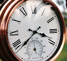 garden clock colour by 8oss