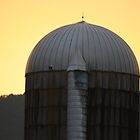Silo Sunset by Cathy Cale